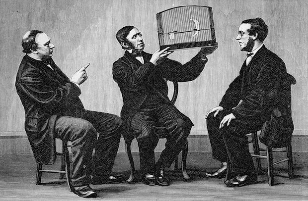 Trois hommes et un oiseau appelé Twitter