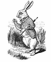Suivez le lapin blanc
