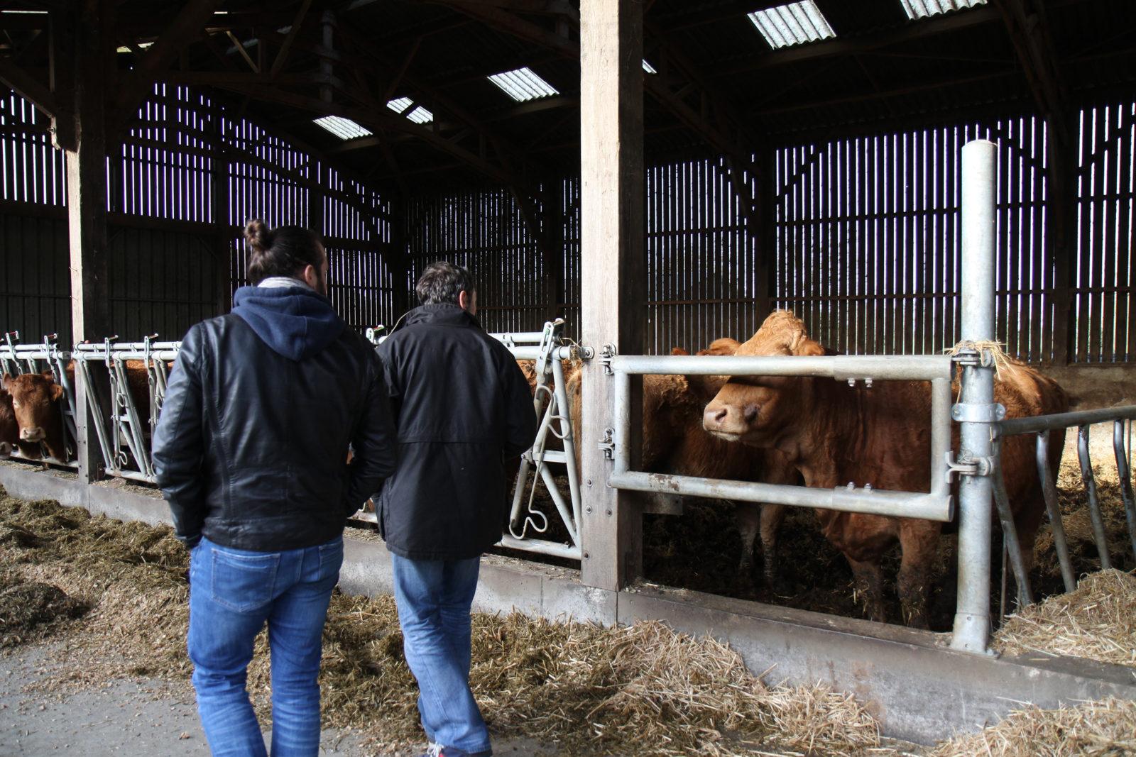Damien Legendre en visite d'une exploitation agricole pour un projet de design UX