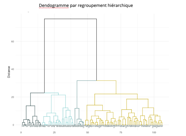 dendogramme profils type UX research